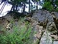 Gestein, Wurzeln von unten und Wald - panoramio.jpg