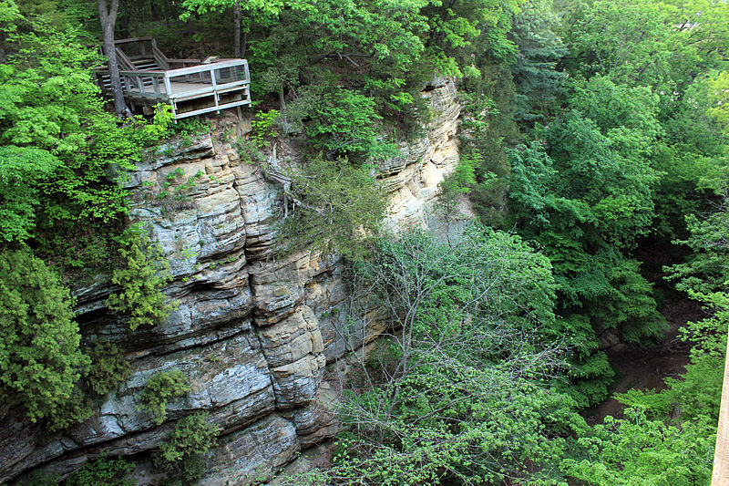 File:Gfp-illinois-starved-rock-state-park-view-of-canyon-wall.jpg
