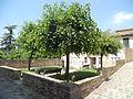 Giardino della Liberazione.JPG