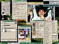 Gimp linux fullscreen.jpg