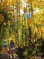 Girls Hiking Gold Aspens (23131234861).jpg