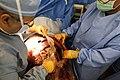 Global Medic 15 150614-A-GA303-019.jpg