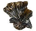 Goethite-Hematite-258719.jpg