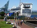 Golden Princess 3806 1140.jpg