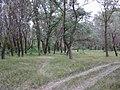 Gorodishchensky District, Volgograd Oblast, Russia - panoramio (35).jpg