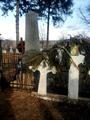 Grab der Familie Grigorcea-Flondor in Sinăuti 1.png