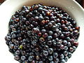 Grape Jam - Concord Grapes washed.jpg