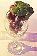 Grapes in a glass.jpg
