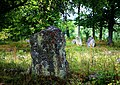 Gravfält Almunge 38-1 Uppland 3.jpg