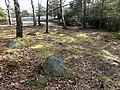 Gravfält i Ruddalen (Raä-nr Västra Frölunda 97-1) domarring 2416.jpg