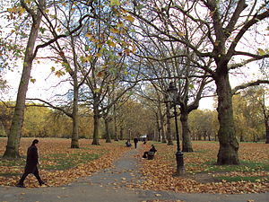 Green Park, central London in autumn.
