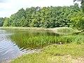 Grosser Lienewitzsee (Great Lienewitz Lake) - geo.hlipp.de - 39310.jpg
