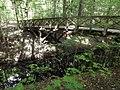 Grunewald - Fussgaengerbruecke (Footbridge) - geo.hlipp.de - 28127.jpg