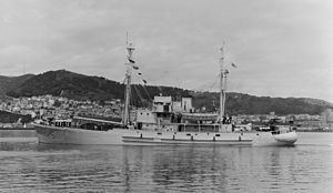 HMNZS Endeavour, the Antarctic expedition ship, Wellington Harbour, 1956 (side view)