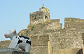 HOLYsquishyCOW at the Old Fort in Diu.jpg