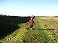 Hadrian's Wall National Trail west of Limestone Corner - geograph.org.uk - 1017672.jpg