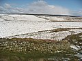 Hadrian's Wall and Steel Rigg west of Milecastle 39 - geograph.org.uk - 749947.jpg