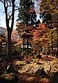 Hakone – Japan (4118905903).jpg