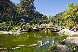 Saratoga, California - Hakone Gardens