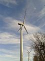 Halde Nierchen Nordex Windkraftanlage (3).jpg