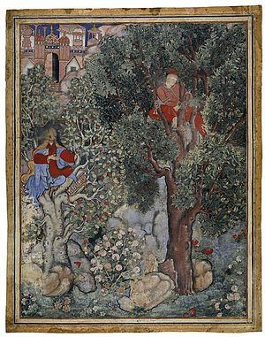 Hamzanama - The Hamzanama chronicles the fantastic adventures of Hamza as he and his band of heroes fight against the enemies of Islam. The stories, from a long-established oral tradition, were written down in Persian, the language of the court, in multiple volumes. This illustration shows the witch Anqarut in the guise of a beautiful young woman, who hopes to seduce the handsome king Malik Iraj, whom she has captured and tied to a tree.