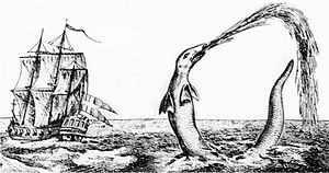 Sea monster - Sea serpent reported by Hans Egede, Bishop of Greenland, in 1734