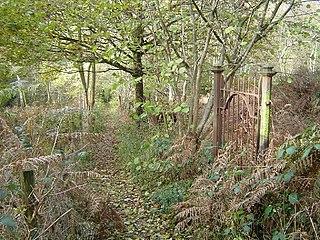 Ruislip Woods