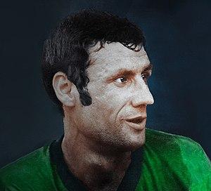 Hassan Habibi (footballer) - Image: Hassan Habibi 2