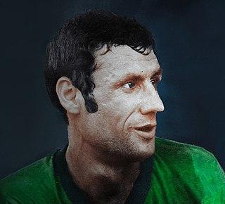 Hassan Habibi (footballer) Iranian association football player