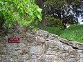 Hawarden Castle Estate (32).JPG