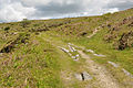 Haytor Granite Tramway 3.jpg