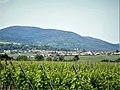 Heiligenstein, vu de la route de Sand. (2).jpg