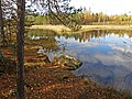 Heinijärvi ,Nokia - panoramio.jpg