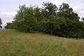Herbstein Stockhausen Weinberg bei Stockhausen NR W.png