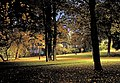 Hesperia park in October 2 - Marit Henriksson.jpg