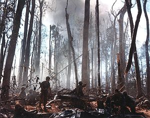 Battle of Khe Sanh - Combat on Hill 875, the most intense of the battles around Dak To.
