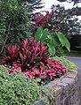 Hillwood Gardens in July (19179421224).jpg