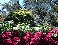 Hillwood Gardens in September (21472412260).jpg