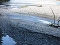 Hinterrhein Rhäzüns Isla Bella.jpg
