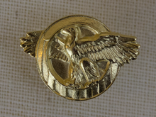 220px-Honorable_Service_Lapel.png