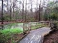 Houston Arboretum and Nature Center - panoramio - Idawriter (1).jpg