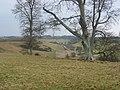 Howe Burn - geograph.org.uk - 118855.jpg