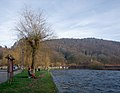 Humans watching the Semois river from a bench in Vresse-sur-Semois (DSCF4806).jpg