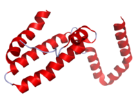 IL10 Crystal Structure.rsh.png