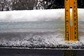 Ice storm 2013 Potsdam NY.JPG