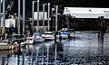Icy Strait Point (19) (8110354740).jpg