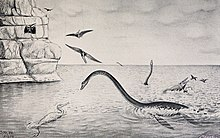 Old drawing of elasmosaur inaccurately raising its neck from ocean with pterosaurs, mosasaurs, swimming bids, and other elasmosaurs and a cliff in foreground and background