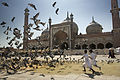 India - Delhi girls chasing doves - 6159.jpg