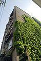 Ivy'ed Building (2460951845).jpg