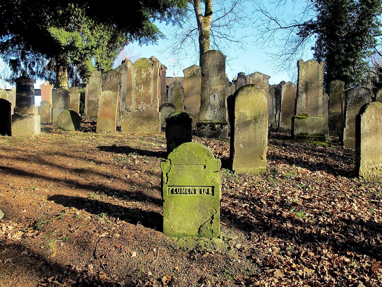 Jüdischer Friedhof, meist Einzelgräber - panoramio.jpg